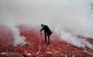 Sea of firecrackers