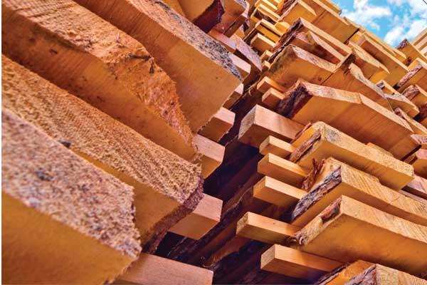 Types Of Hardwoods